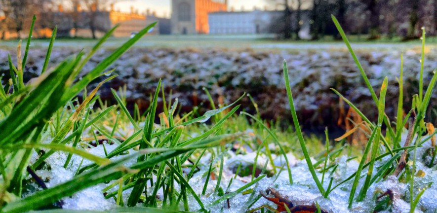 Photo of a frost morning, looking across the back to Kings College Chapel